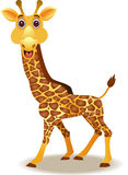 Desenhos animados engraçados do giraffe Fotografia de Stock Royalty Free