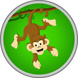 Desenhos animados engraçados do macaco na árvore Fotos de Stock Royalty Free