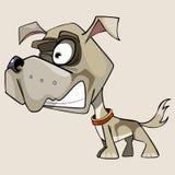 Desenhos animados engraçados que rosnam o cão pequeno com uma cabeça grande Imagens de Stock Royalty Free