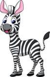 Desenhos animados engraçados da zebra Fotos de Stock