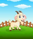 Desenhos animados felizes da cabra no campo Imagens de Stock Royalty Free