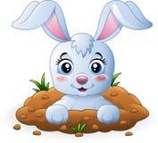 Desenhos animados felizes do coelho no furo ilustração do vetor