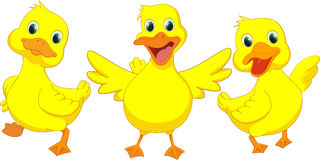 Desenhos animados felizes do pato Fotos de Stock