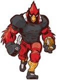 Desenhos animados Football Player Mascot cardinal do vetor no uniforme Imagens de Stock