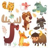 Desenhos animados Forest Animals Set Ilustração do vetor Pássaro dos alces do urso do búfalo da raposa do varrão do guaxinim do r ilustração royalty free