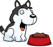 Desenhos animados Husky Food Imagens de Stock Royalty Free