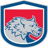 Desenhos animados irritados de Wolf Wild Dog Head Shield Imagem de Stock