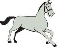 Desenhos animados laterais trotar do cavalo isolados Fotos de Stock