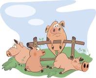 Desenhos animados pequenos dos porcos Imagens de Stock