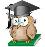 Desenhos animados sábios da coruja Fotografia de Stock