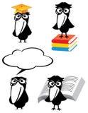 Desenhos animados sábios do pássaro ilustração royalty free