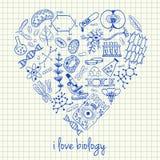Desenhos da biologia na fôrma do coração ilustração do vetor