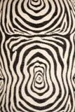 deseniowa tkaniny zebra zdjęcia royalty free