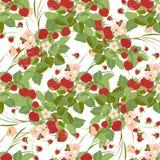 deseniowe bezszwowe truskawki Obrazy Stock