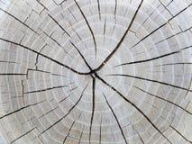 deseniowy drewno Fotografia Royalty Free