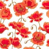 deseniowy makowy bezszwowy Obrazy Royalty Free