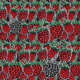 deseniowy malinowy bezszwowy Fotografia Royalty Free