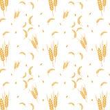 Deseniowy pszeniczny zbożowy żniwo Obrazy Royalty Free