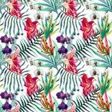 deseniowy tropikalny Obrazy Royalty Free