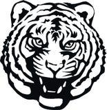 deseniowy tygrys Fotografia Royalty Free