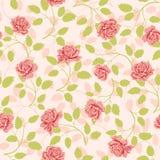 deseniowych róż bezszwowa tapeta Zdjęcia Stock