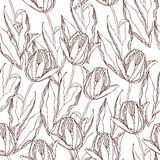 deseniuje tulipanu wektor Fotografia Royalty Free