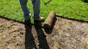 Desenrolando a grama para um gramado novo imagens de stock