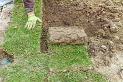 Desenrolar a grama, aplicando o relvado rola para um gramado novo imagens de stock