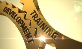 Desenvolvimento do treinamento nas engrenagens douradas 3d Imagem de Stock