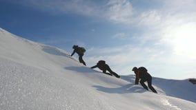 Deseo del trabajo en equipo de ganar Los escaladores suben al top de una montaña nevosa en Alaska Viajeros en el ártico en una co almacen de metraje de vídeo