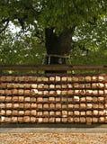 Deseos en un árbol en Tokio Japón Imagenes de archivo