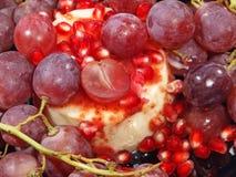Deser z świeżymi winogrona i granatowa adra. Fotografia Stock