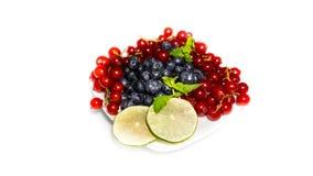 Deserowe różnorodne jagody odizolowywać na białym tle Obraz Stock