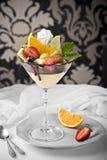 Deserowego withl tropikalne owoc na retro tle na retro tle obraz stock
