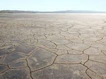 Desert. Stock Photo