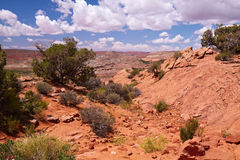 Desert. Red Desert, Arches National Park, Utah, USA Royalty Free Stock Photography