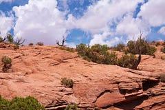 Desert. Red Desert, Arches National Park, Utah, USA Royalty Free Stock Photo