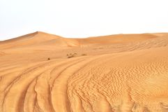 Desert royalty free stock images