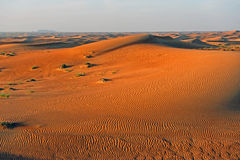 Desert. Sand dune with wind-made waves Royalty Free Stock Photography