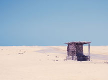 Desert. Sun desert of the Egipt royalty free stock images