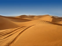 The desert. With blue sky royalty free stock image