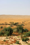 Desert. View of Negev desert in the south Israel Royalty Free Stock Photo