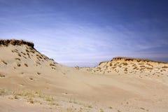 Desert. A sand-dune at the desert stock photo