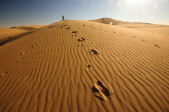 Desert. Lonely traveller in Badanjilin Desert, China Royalty Free Stock Photo