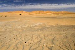 The Desert. Royalty Free Stock Photos