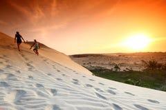 Desert. Sand under blue sunny sky royalty free stock image