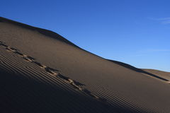 Desert. At the west of china Stock Photos