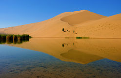 Desert. Lake in an arid desert Royalty Free Stock Photos