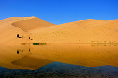Desert. Lake in an arid desert Royalty Free Stock Photo