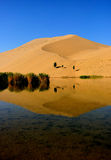 Desert. Lake in an arid desert Stock Photography